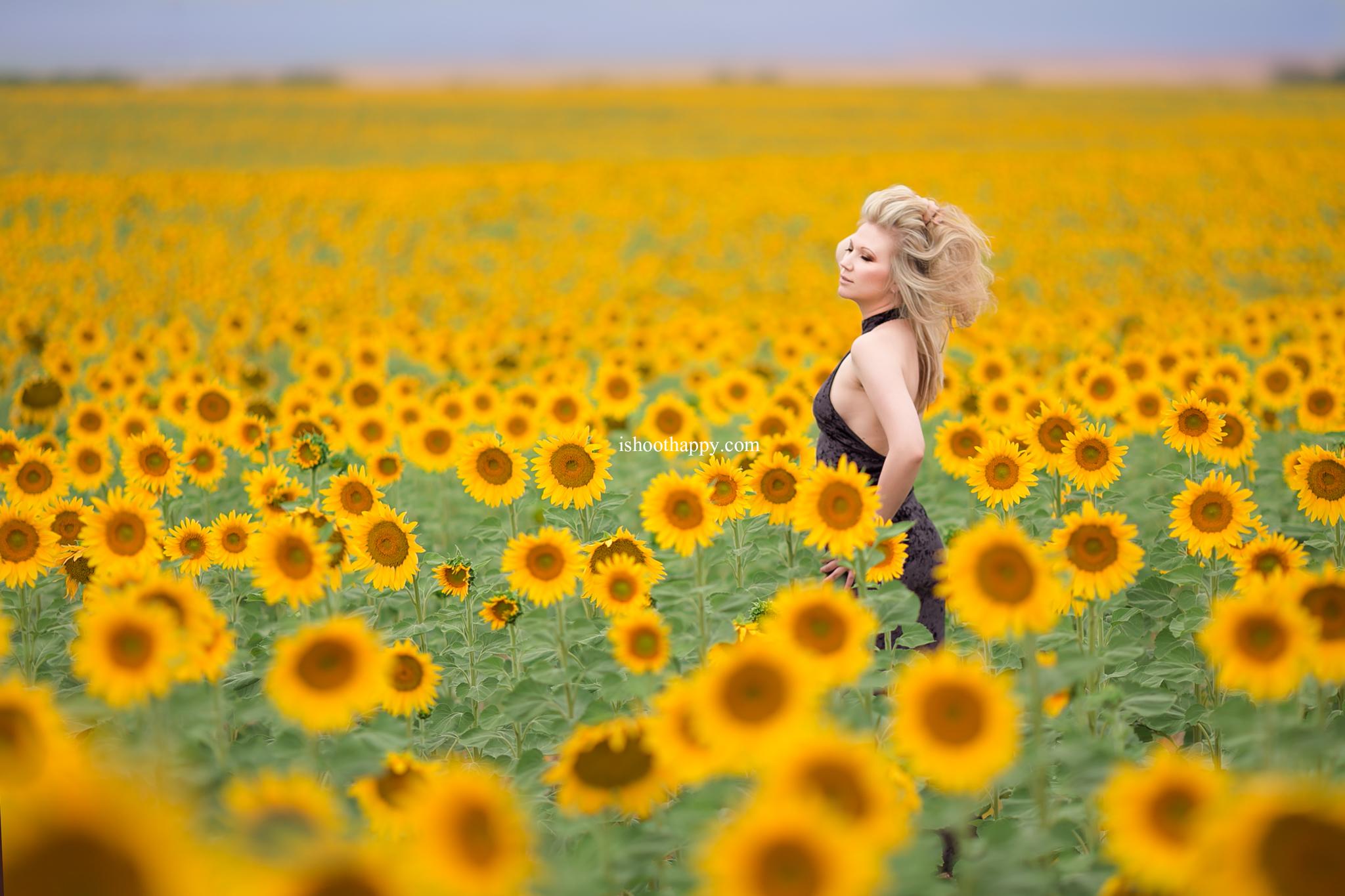 Denver fine art portraiture, Denver portrait photographer, whimsical photography in Denver, beautiful portraits, denver best portrait photographer, sunflower field, beautiful girl in a sunflower field